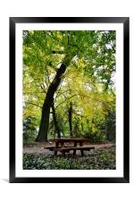 Picnic in the Woods, Framed Mounted Print