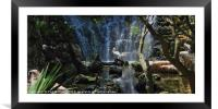 Pelicans & Waterfall, Framed Mounted Print