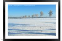 Winter Wonderland, Framed Mounted Print