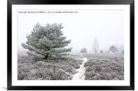 Frozen Heath, Framed Mounted Print