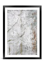 Frosted Tree, Framed Mounted Print