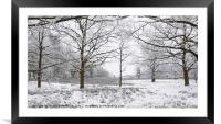 Frozen Nature, Framed Mounted Print