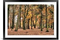 Autumn Splendour, Framed Mounted Print