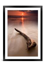 Driftwood at sunset, Framed Mounted Print