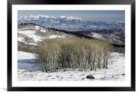 Utah Landscape in Winter, Framed Mounted Print