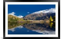 Glendhu Bay, Lake Wanaka, New Zealand with Mt Aspi, Framed Mounted Print
