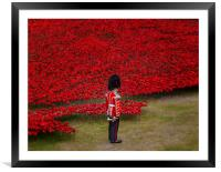 The River Of Red, Framed Mounted Print