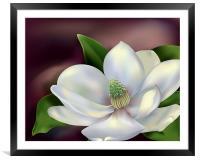 Magnolia Flower, Framed Mounted Print