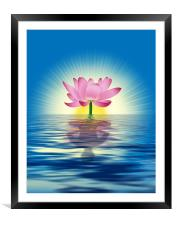 Lotus Reflection, Framed Mounted Print