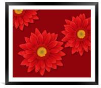 Gerbera Flowers Close-up, Framed Mounted Print