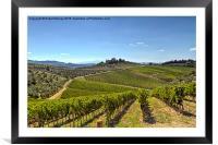 Vineyards of Tuscany, Framed Mounted Print