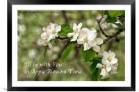 Apple Blossom Time, Framed Mounted Print