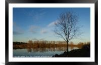 Whitlingham Sunset Trees, Framed Mounted Print