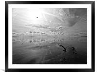 Salt Lagoon B&W, Framed Mounted Print