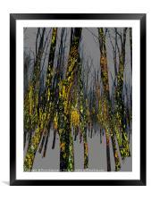 Northside Texture, Framed Mounted Print