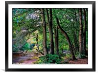 """""""Tranquility"""", Framed Mounted Print"""