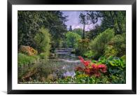 """Lush Spring foliage at Thorp Perrow"", Framed Mounted Print"