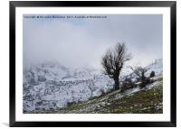 On a snowy day,, Framed Mounted Print