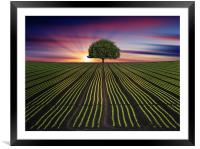 standing alone , Framed Mounted Print