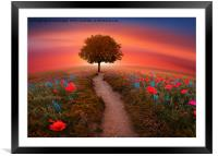 The little Red Tree on the hill , Framed Mounted Print