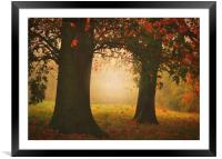 London In the Autumn , Framed Mounted Print
