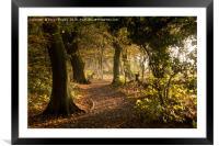 Meresands woodland, Framed Mounted Print