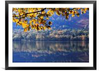 Autumn at Loweswater, Framed Mounted Print