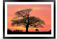 silhouette at sunset, Framed Mounted Print