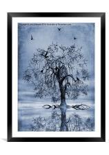 The Wishing Tree Cyanotype, Framed Mounted Print