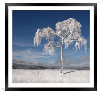 I'm Cold- Brrrrr., Framed Mounted Print