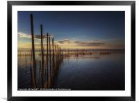 Lake Albufera, Framed Mounted Print