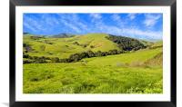 Green Meadow, Jalama Road CA, Framed Mounted Print
