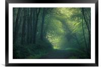 Foggy Morning, Framed Mounted Print