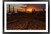 Worthing  Waterwise Garden at Sunset  , Framed Mounted Print