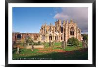 Melrose Abbey , Scotland, Framed Mounted Print