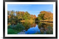 Reflected Colours of Autumn, Framed Mounted Print