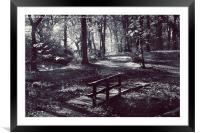 forest walk, Framed Mounted Print