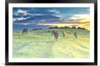 Misty Sunrise horses, Framed Mounted Print