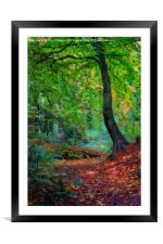 Autumn forest, Framed Mounted Print