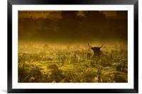 Misty morning, Framed Mounted Print