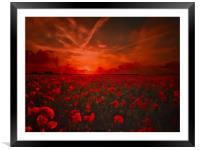 Poppy Field for Remembrance. Lest we Forget, Framed Mounted Print