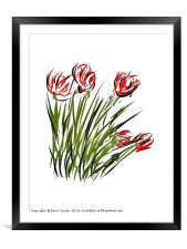 Poppies for Remembrance , Framed Mounted Print
