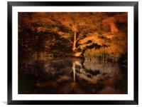 Autumnal Colours, Framed Mounted Print