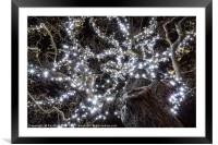 Christmas Lights , Framed Mounted Print