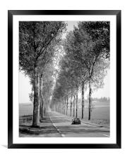 Tree Lined Road France , Framed Mounted Print