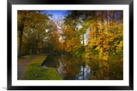 Basingstoke Canal in Autumn , Framed Mounted Print