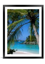 Trunk Bay, St John , US Virgin Islands, Caribbean., Framed Mounted Print