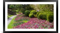 Guildford Castle Grounds ,Surrey England , Framed Mounted Print