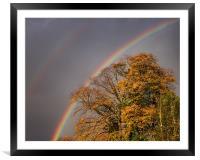 Autumn Rainbow, Framed Mounted Print