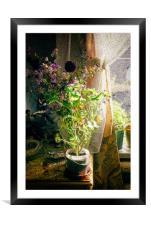Vintage Classic Flower Still Life, Framed Mounted Print